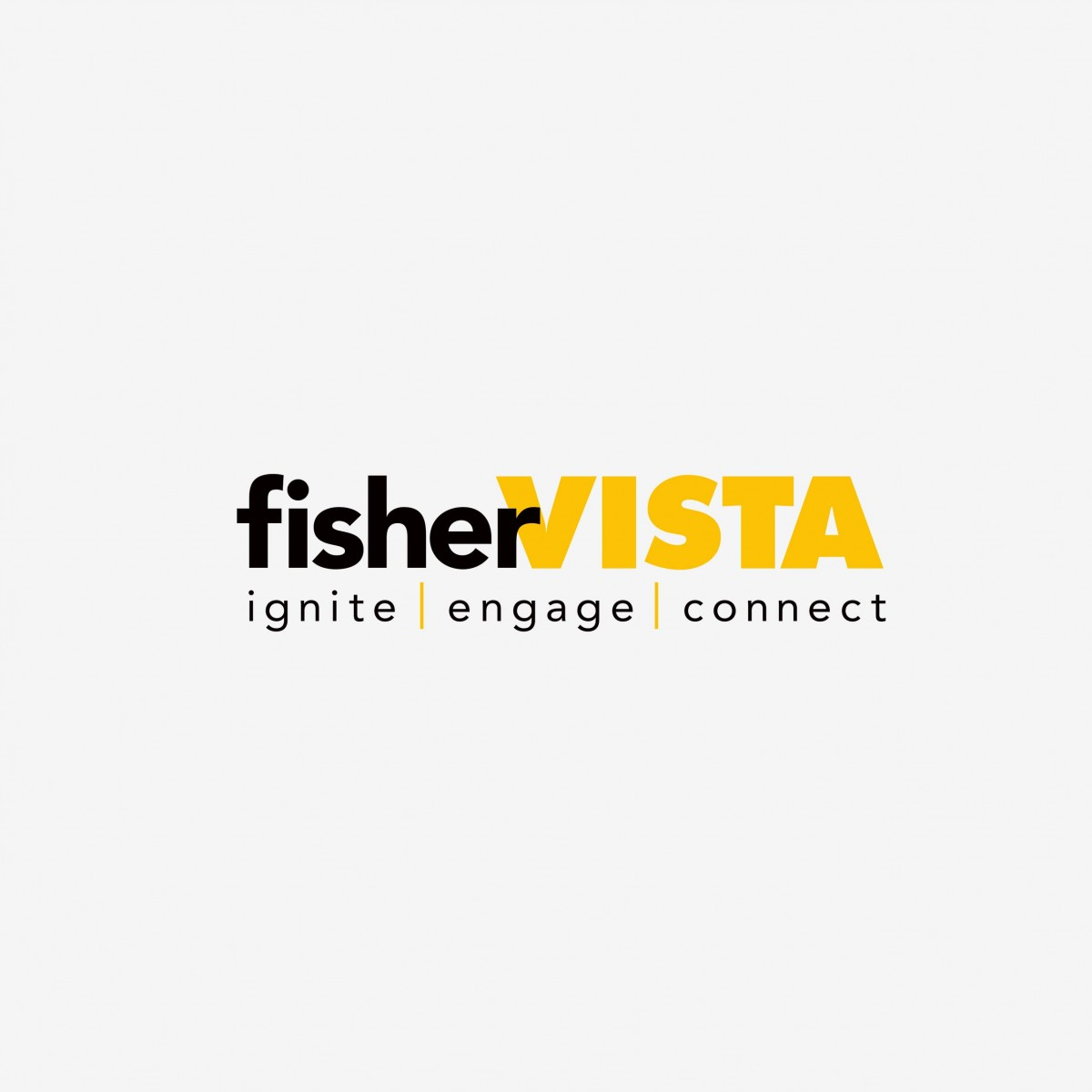 fisherVista corporate identity