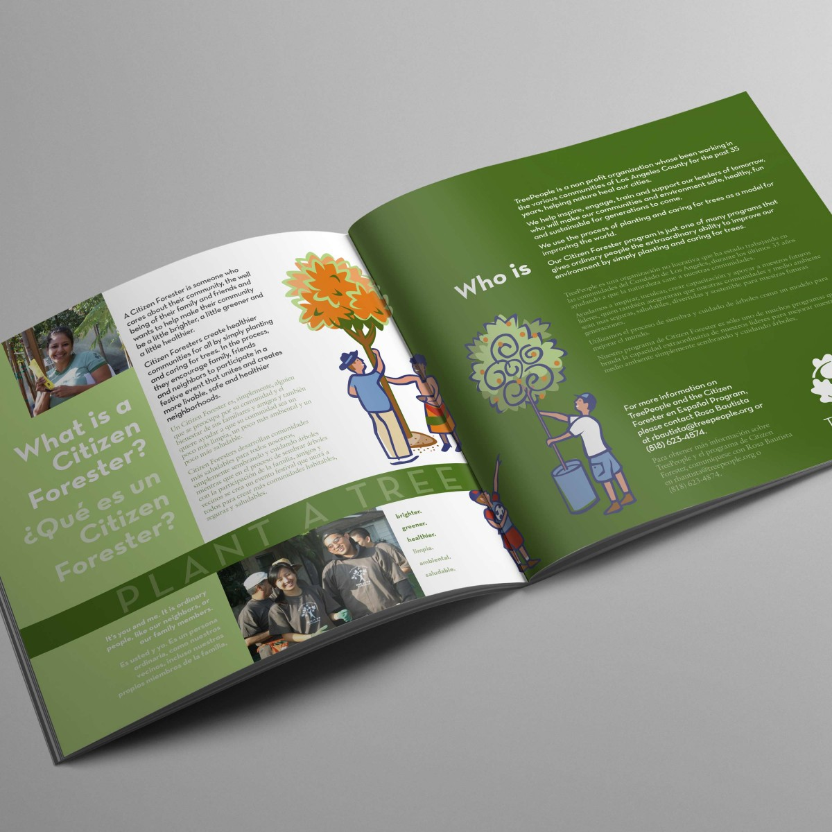Tree People informational brochure interior